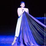 Verdi Does Shakespeare:  'Otello' from Vienna